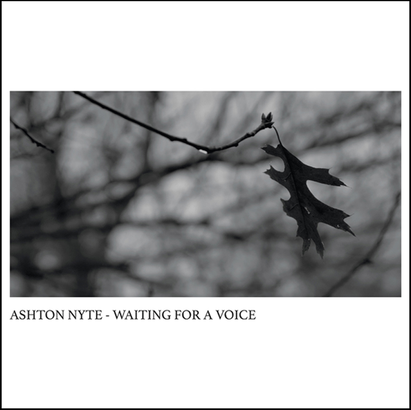 ASHTON NYTE - WAITING FOR A VOICE album coverTM